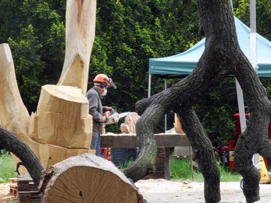 alberi scultura